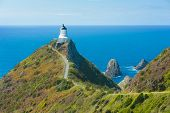 picture of lighthouse  - Lighthouse on Nugget Point - JPG