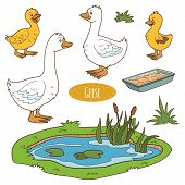 image of baby goose  - Color set of cute farm animals and objects vector goose family - JPG