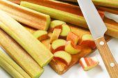 foto of cut  - detail of fresh cut rhubarb on wooden cutting board - JPG