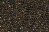 picture of peppercorns  - Black peppercorn background - JPG