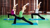 stock photo of virabhadrasana  - Girls practicing yoga - JPG