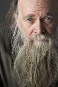 stock photo of long beard  - Senior Man With Long Beard - JPG