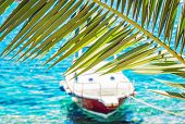Beautiful Palm Tree And Little Boat In Maslinica, Solta Island, Croatia. Summer Vacation Destination poster