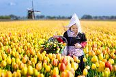 Child In Tulip Flower Field. Windmill In Holland. poster