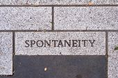 The Word Spontaneity On A Motivational Brick Sidewalk Made Of Concrete And Mortar. poster