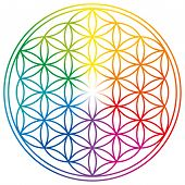 Flower Of Life In Rainbow Colors. Geometrical Figure, Spiritual Symbol, Sacred Geometry. Overlapping poster