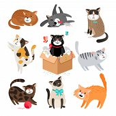 Vector Cats. Simple Cute Cartoon Drawing Different Cat Collection Isolated On White, Sleeping And Si poster