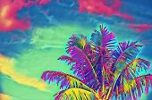 Neon Coco Palm Tree On Vivid Sky Digital Illustration. Psychedelic Tropical Vacation Banner Template poster