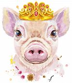 Cute Piggy. Pig For T-shirt Graphics. Watercolor Pink Mini Pig Illustration With Crown poster