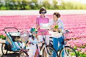 Family On Bike In Tulip Flower Fields, Holland poster
