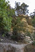 Path In Avakas Gorge, Hiking In The Gorge On An Autumn Day. poster