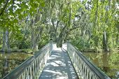 picture of bayou  - A bridge crosses a pond on a southern plantation - JPG