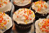 stock photo of sprinkling  - Festive Fall Chocolate Cupcakes with Vanilla Frosting with Sprinkles - JPG