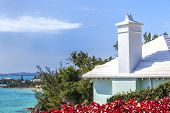 pic of shoreline  - The unique architecture of a Bermuda home overlooking it - JPG