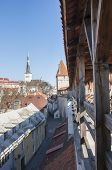 foto of olaf  - View from the ancient curtain wall in the old town of Tallinn Estonia - JPG