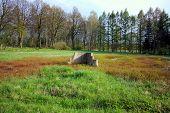 foto of shooting-range  - View on shooting range in sunny day - JPG