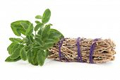 stock photo of wiccan  - Smudge stick with fresh sage leaf sprigs over white background - JPG