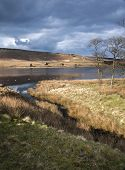 image of windswept  - Widdop reservoir set on the wild and windswept moorland of the south pennines - JPG
