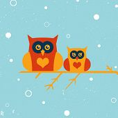 picture of snow owl  - Two owls on the tree - JPG