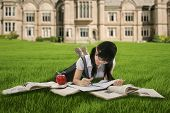 stock photo of indian apple  - Female student studying outdoors while lying on green grass - JPG