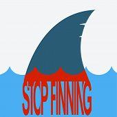 foto of fin  - Shark finning - JPG