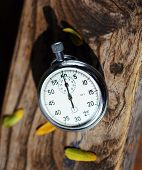 stock photo of chronometer  - chronometer on the wood close up shallow dof - JPG