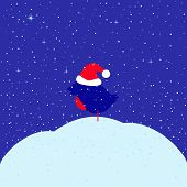 pic of new years baby  - Greeting card with bullfinch in red Christmas hat sitting on snowdrift under snowfall and dark blue evening sky with glittering stars with space for your own text - JPG