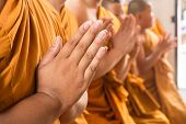 image of respect  - Hand of young Asian monk pay respect to the Buddha - JPG