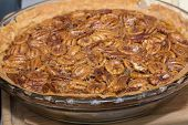 stock photo of pecan  - A whole freshly home made pecan pie ready to eat  - JPG