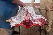stock photo of slaughter  - Traditional home slaughtering in a rural area - JPG