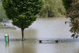 image of dustbin  - Flooded park with park bench and dustbin - JPG