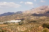 picture of pueblo  - Tipical andalusian village  - JPG