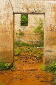 foto of house woods  - Inside the remains of a quarry power house - JPG