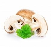 image of champignons  - Brown champignons mushrooms close - JPG
