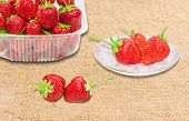 foto of picking tray  - Plastic tray and saucer with freshly picked strawberries and two berries separately on the surface of scrim - JPG