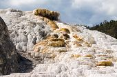 foto of mammoth  - Palette Spring in Mammoth Hot Spring Area - JPG