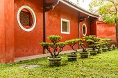 picture of bonsai  - Red wall of traditional Chinese house with bonsai plants - JPG