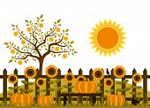 stock photo of bird fence  - vector pumpkins and sunflowers along picket fence - JPG