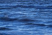 Wavy Surface Of The Sea. Slightly Wavy Surface Of The Sea. Small Waves Ripple The Surface Of The Wat poster