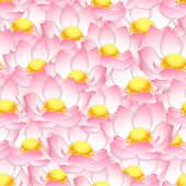 Pink Indian Lotus Seamless Background. (nelumbo Nucifera,sacred Lotus, Bean Of India, Egyptian Bean. poster