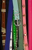 woman many colorful Rivets belts –close up  poster