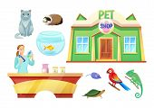 Pet Shop Animals And Girl At Check-out Counter. Domestic Animals And Female Worker Of Pet Shop. Ador poster