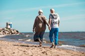 Back view of affectionate senior couple holding by hands while walking down sandy beach along coastl poster