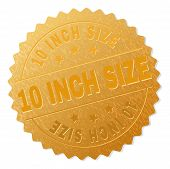 10 Inch Size Gold Stamp Seal. Vector Gold Medal Of 10 Inch Size Text. Text Labels Are Placed Between poster