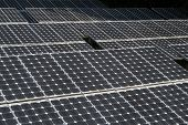 Closeup Of Solar Panel. Large Solar Panels In The Rainforest. Alternative Solar Energy. poster