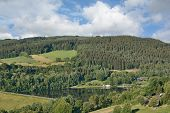 View To Lake Kronenburger See In Eifel,north Rhine Westphalia,germany poster