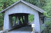 Cedar Creek Wood Bridge