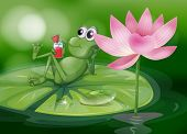 image of glass frog  - Illustration of a frog above the waterlily - JPG