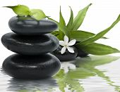 stock photo of bamboo leaves  - Spa still life with black stones and bamboo leafs in the water - JPG