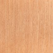 Walnut Wooden Texture, Tree Background